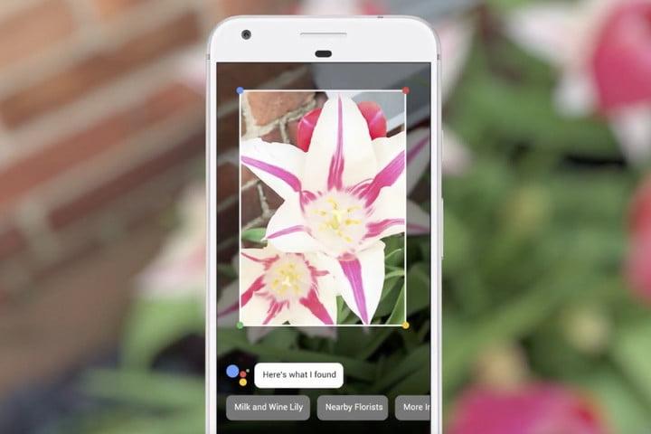 Google Lens (2)