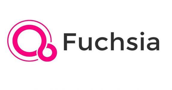 Fuchsia OS (1)